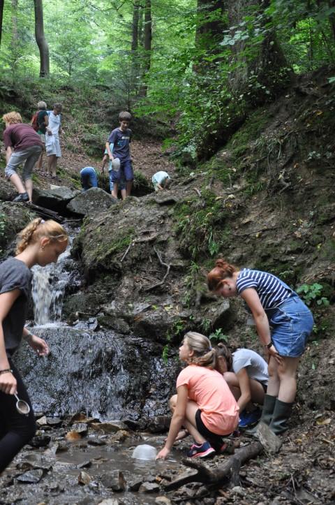 Wasserfloh-Aktivitäten Freiburg Foto Ann Zirker Fotogalerie4 (Small)