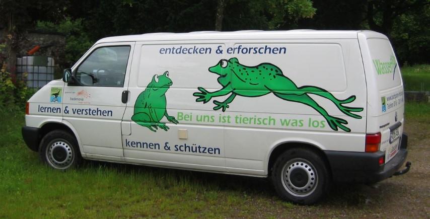 Wasserfloh_Hauptfoto Ann Zirker (Small)